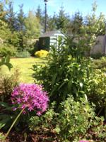 Rear Garden Alt View 2