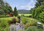 Pond in Rear Garden