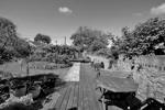 Alternate View of Shared Rear Garden