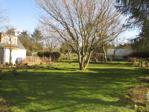 Mature garden areas