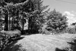 Rear Garden & View
