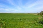 Field To Rear