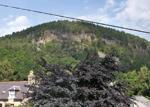 View of Craigendarroch Hill