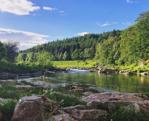 River Dee Fishing