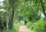 Community Path