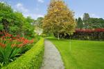 Communal Garden Grounds A