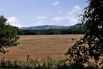 View over Farmland to Hills
