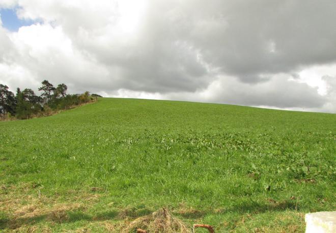 Plot at Denhead of Muiresk