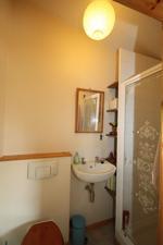 Granny Flat Shower Room