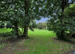 Outlook beyond Rear Garden