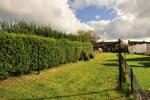 Alternate Garden