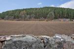 Field To Rear of Back Garden