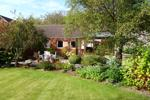 Front garden (alternative view