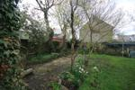 Garden Area with mature trees and shrubs
