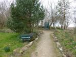 Newburn Wood