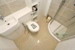 Shower Room- alternative view