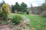 Garden taken from Patio Area